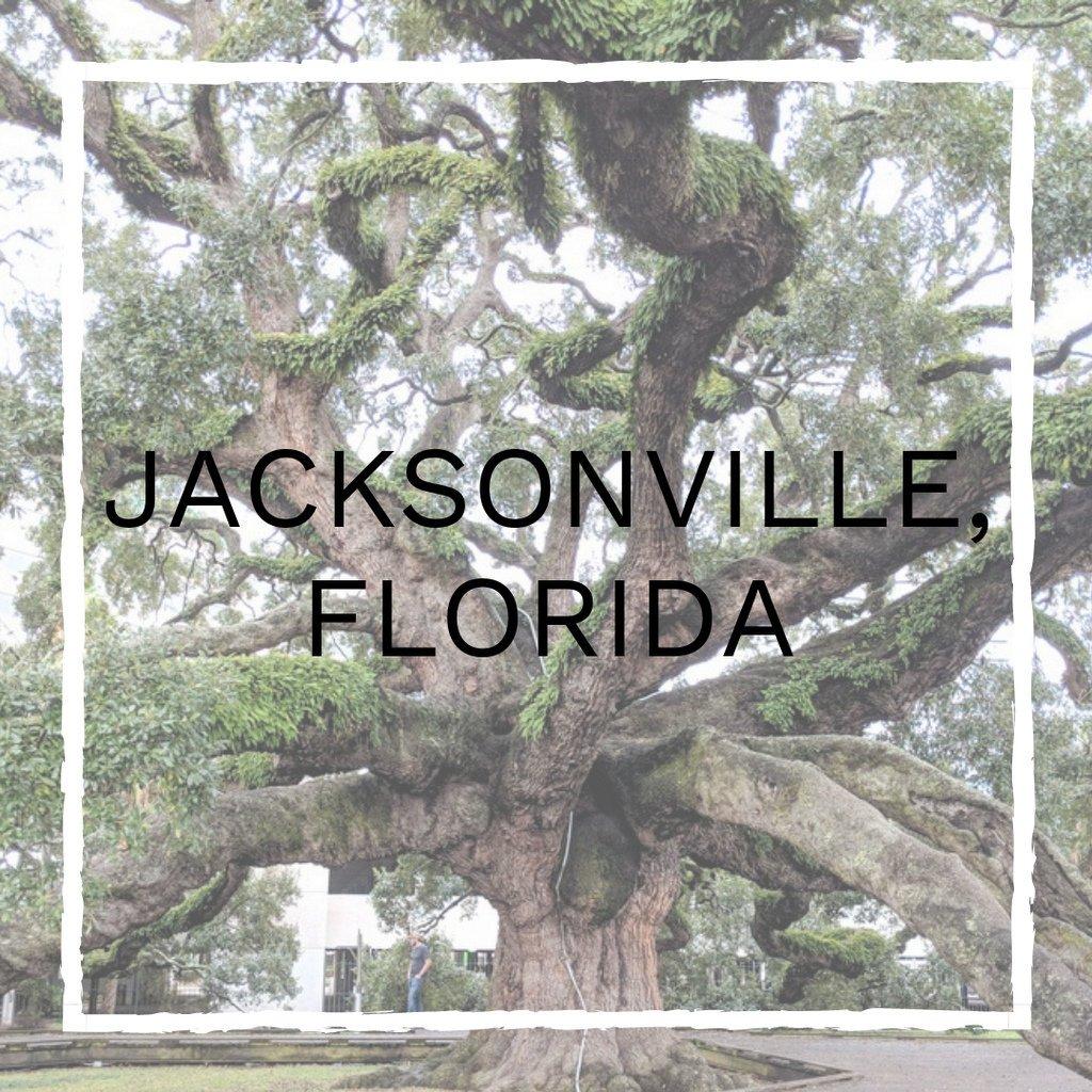 jacksonville-florida-vegan-guide.jpg