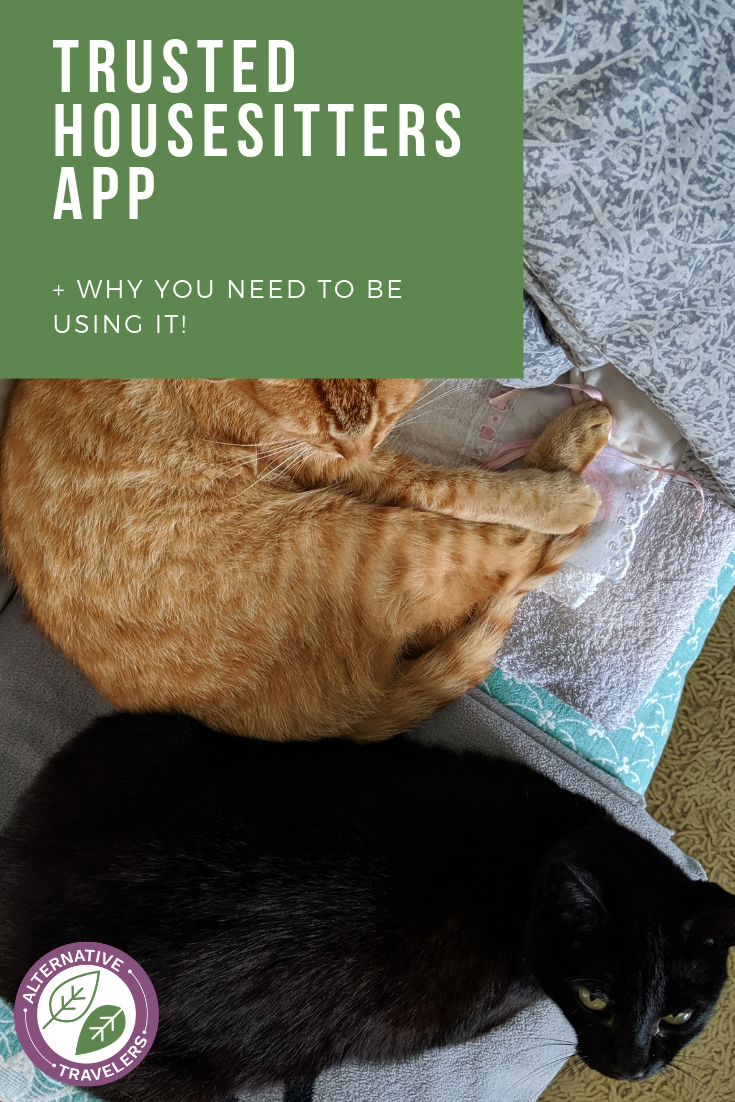 Interested in house sitting tips? Then you need to be using TrustedHousesitters! Read more about the new TrustedHousesitters app and how we use it as full time house sitters. Discount inside! #Housesitting #DigitalNomad #TrustedTales