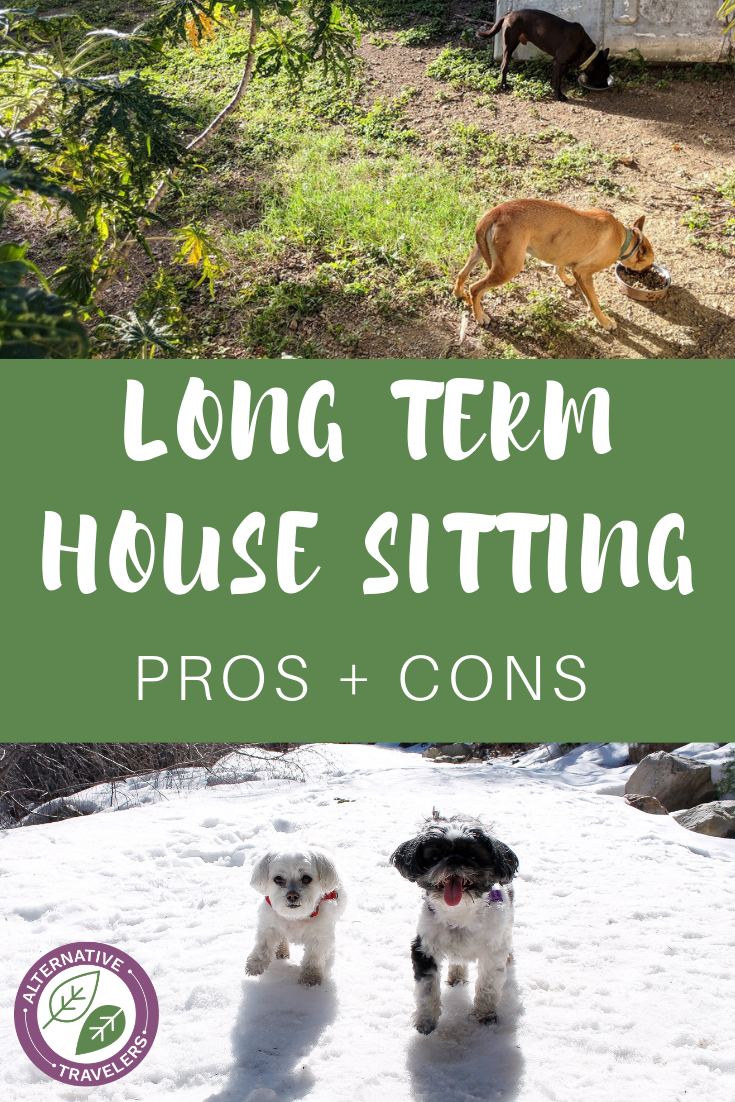 With long term house sitting, you can spend $0 for accommodation for months or years! Learn about the pros and cons of house sitting to see if this method of budget travel is right for you as a digital nomad or long term traveler. #Housesitting #budgettravel #digitalnomad