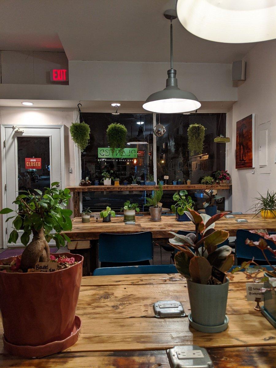 Planted Cafe interior