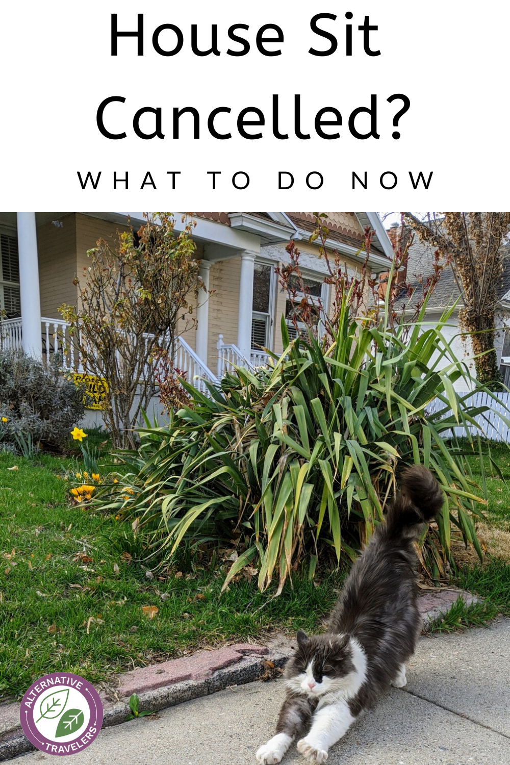 What to do if you find that your house sit has been cancelled, need to cancel a house sit, for pet owners and house sitters. Click to read these house sitting tips now! #Housesitting