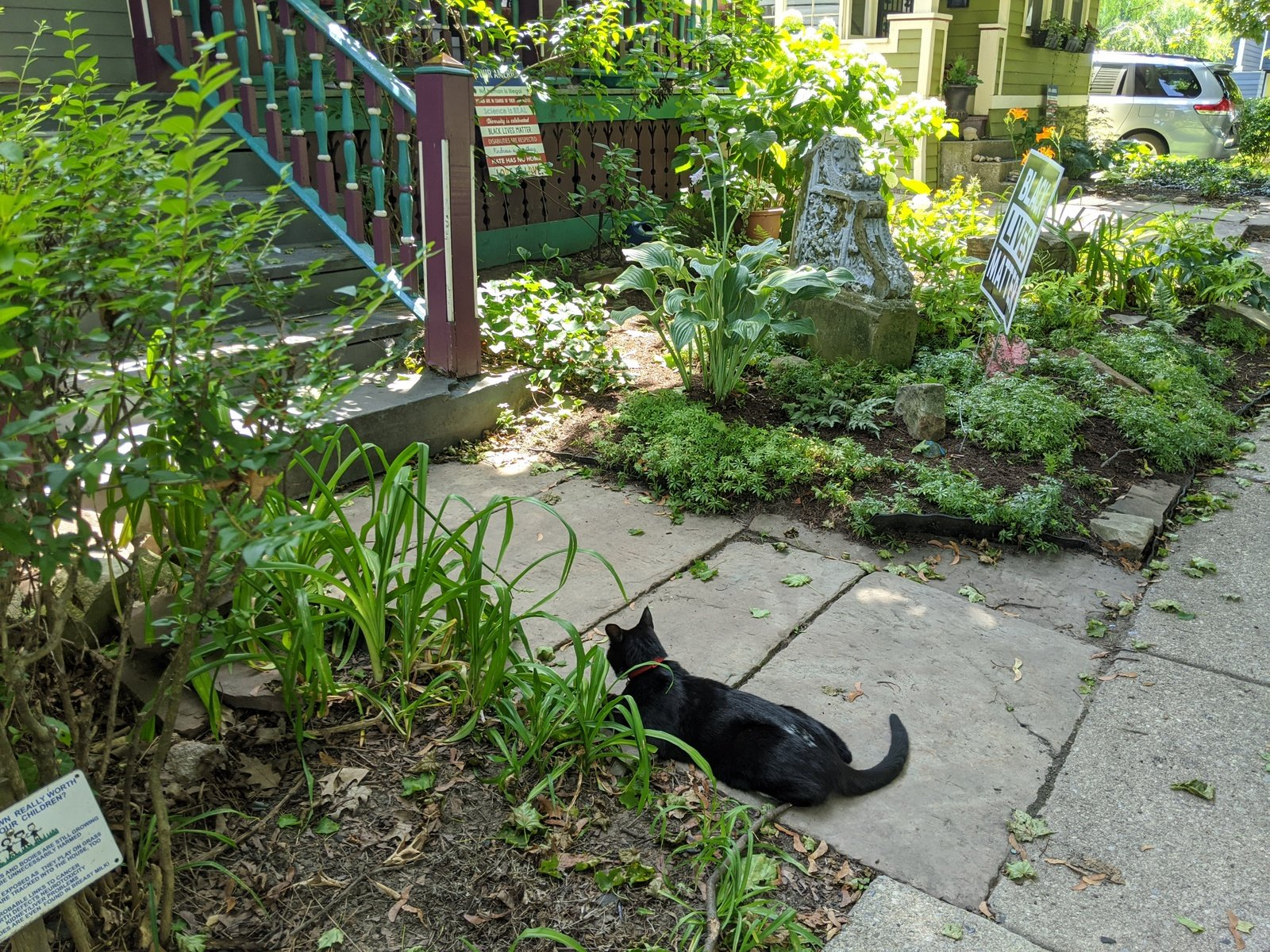 black cat lounges on a path in front of a house